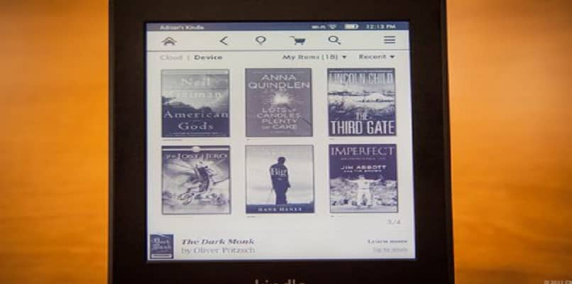 interfaz lector libro electronico kindle