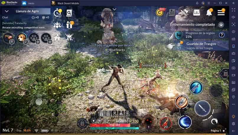 vista de imagen del juego balck desert mobile en escena de ataque