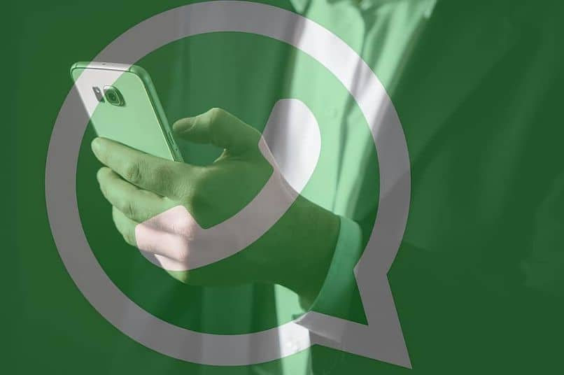 contactos whatsapp telegram