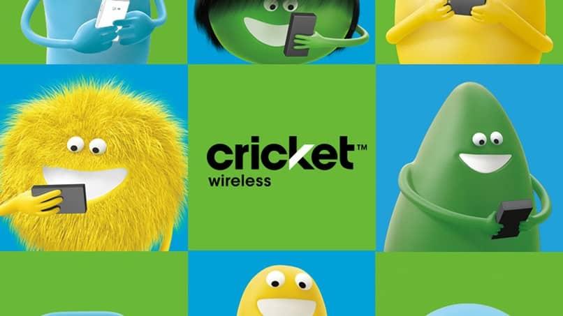 cricket con animaciones