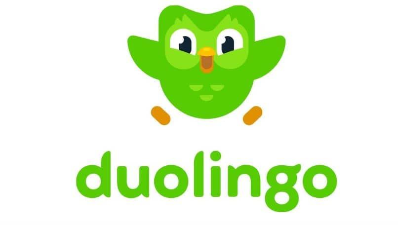 duolingo pro