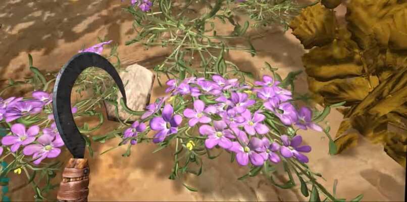 plantas moradas de seda ark
