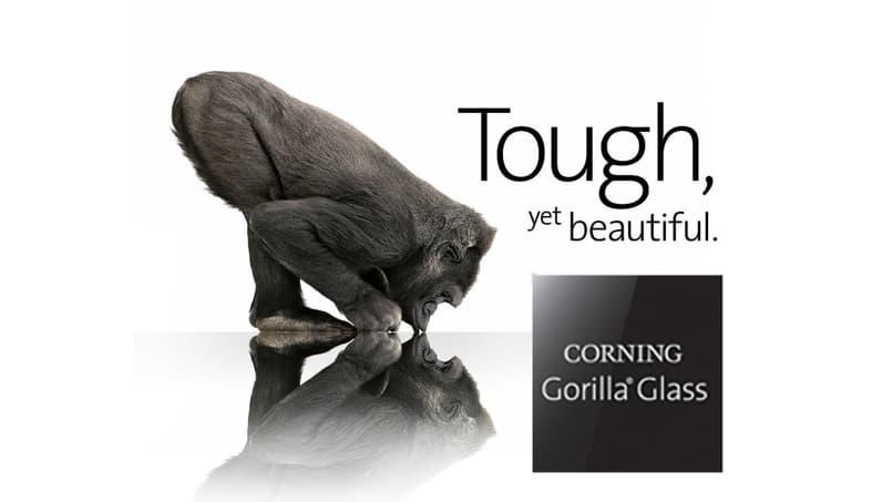 un gorila y su reflejo