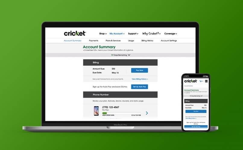 interfaz de cricket en la computadora y en el celular
