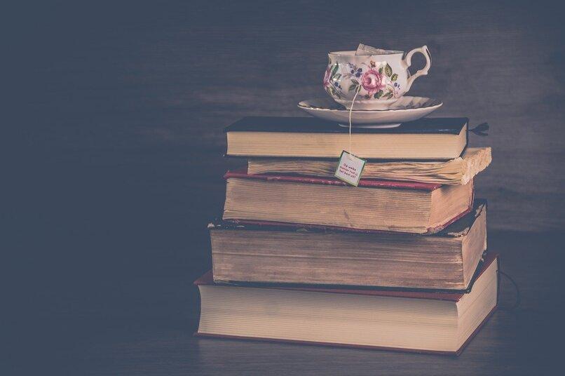 literatura bajo contraste