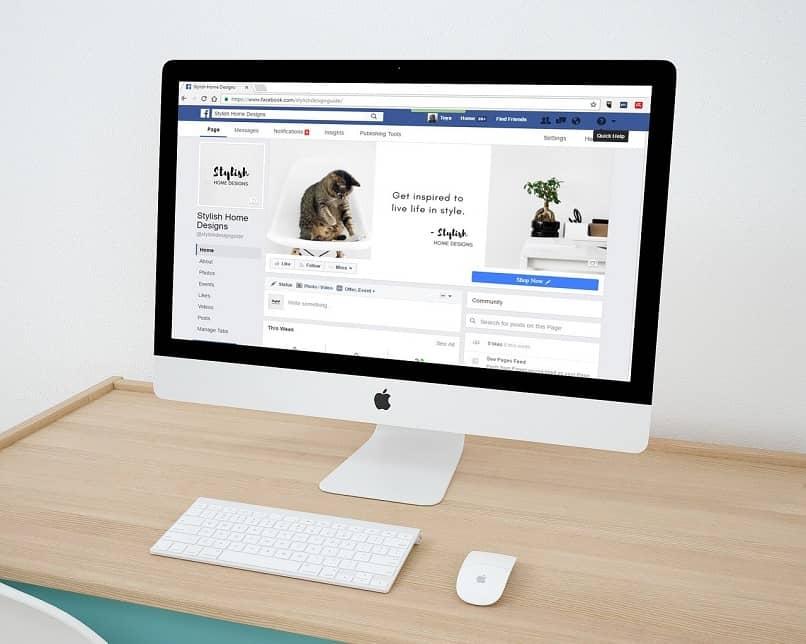 buscando paginas facebook