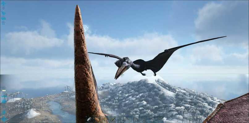 quetzal en el aire
