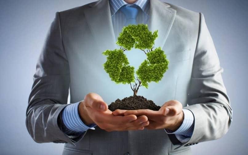 cuidado ambiental empresa