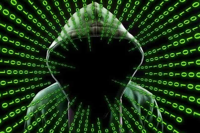 programador creando virus para infectar la web